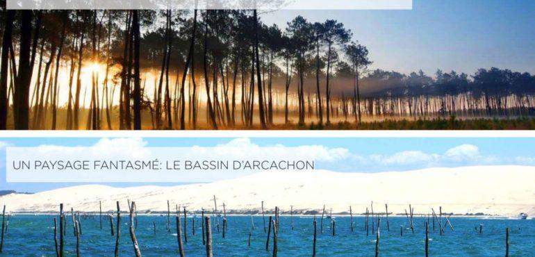 ARCACHON paysage existant composé